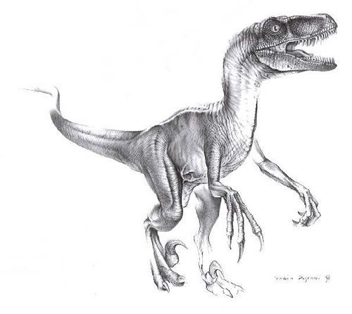 dinosaurus utah raptor coloring pages - photo#29