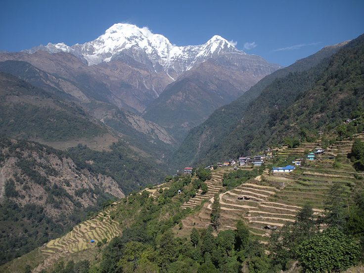 Looking over to Annapurna from Tolka.    #nepal #himalayas #hikingnepal