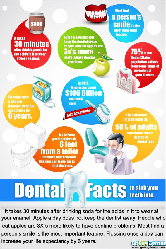 Useful facts about your teeth #teeth #facts #info #dental #tooth #decay #floss #mouthwash
