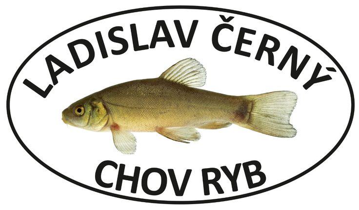 Velkoobchod Chov Ryb Černý