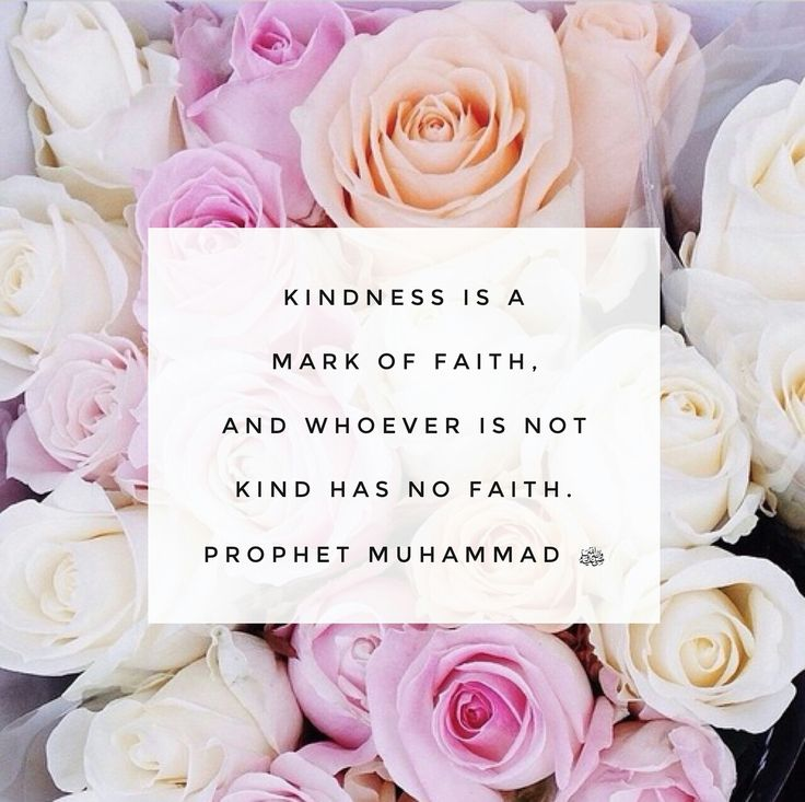 Kindness is a mark of faith and whoever is not kind, has no faith.  - Beloved Prophet Muhammad (peace be upon him)