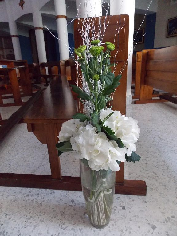 White Hydrangeas, Chrysanthemum buds and silver canes are arranged in a pretty clear vase. A vase is placed in the isle at the end of each pew.