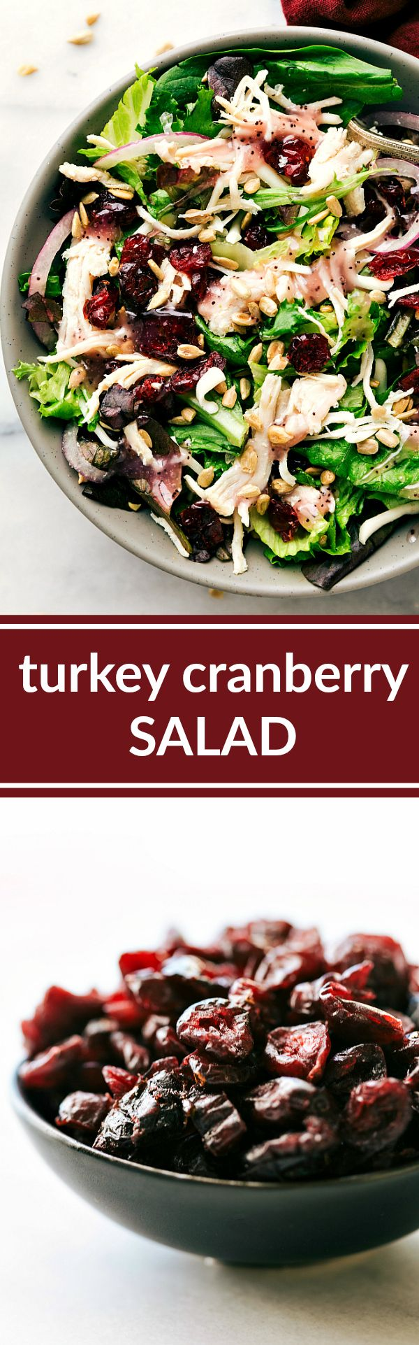 A good-for-you mixed greens salad topped with leftover turkey (or chicken), red onions, dried cranberries, and sunflower seeds Recipe via chelseasmessyapron.com