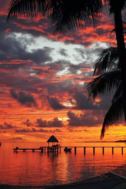 Coucher de soleil à Tahiti. Plus