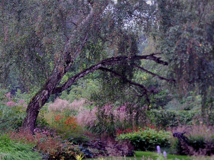 private garden designed by piet oudolf
