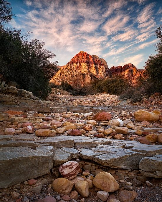 Red Rock Canyon National Park, Nevada...
