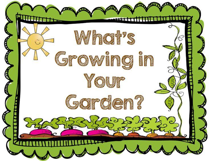 lcps cafe on garden clipartschool gardensspring