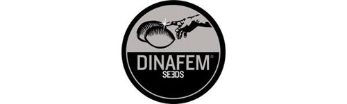 Actualmente, Dinafem Seeds está presente en todos los países europeos donde se comercia con semillas y cada vez más presente en el resto del mundo, siendo considerada como una marca reconocida y puntera en lo referente a las semillas autoflorecientes y feminizadas.