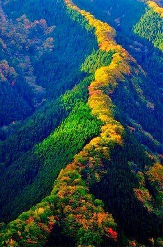 94bc54924f Pin by Shirley Stringer on Natures Beauty | Beautiful places ...