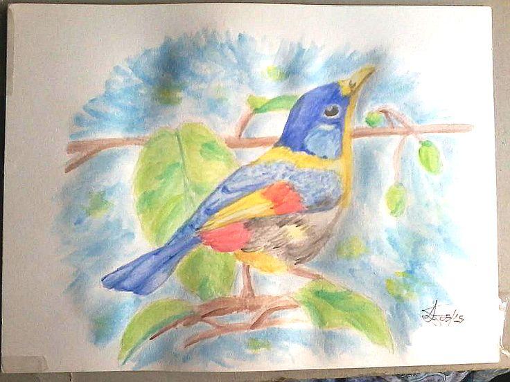 Bird, watercolor 35X25 cm. ca.