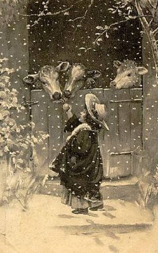 Christmas cows! Love this     LOVELY CHRISTMAS CARD SCENE....I CAN REMEMBER MY GRANDMOTHER SHOWING BROTHER AND ME OLD CHILDREN'S BOOKS WITH CHILDREN LOOKING JUST LIKE THIS LITTLE GIRL....HOWEVER, THE COWS HAVEN'T CHANGED ONE BIT!!.....ccp