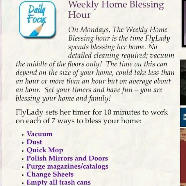 83 best fly lady images on pinterest