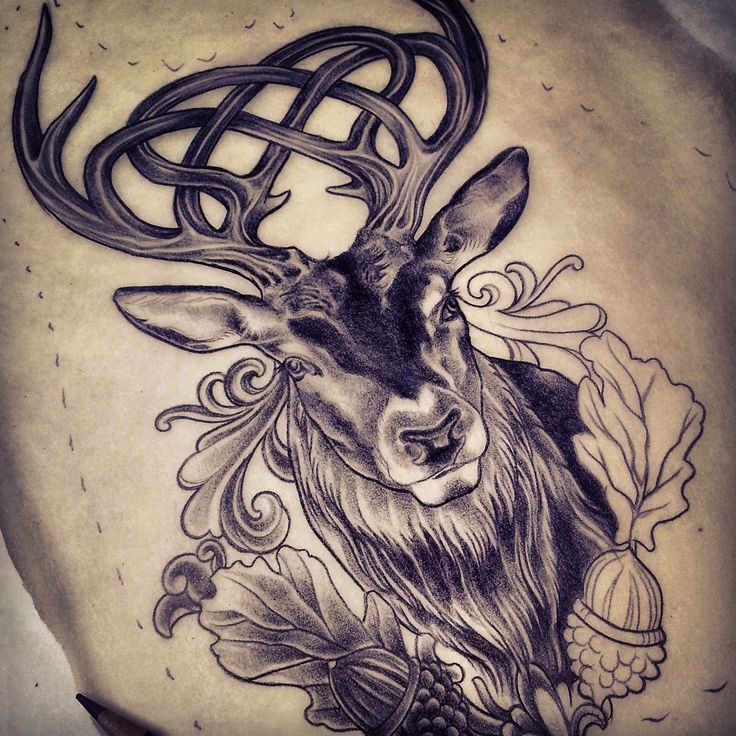 Celtic+Stag+Tattoo | Celtic stag tattoo design by Adam Sky, Rose Gold's Tattoo, San ...