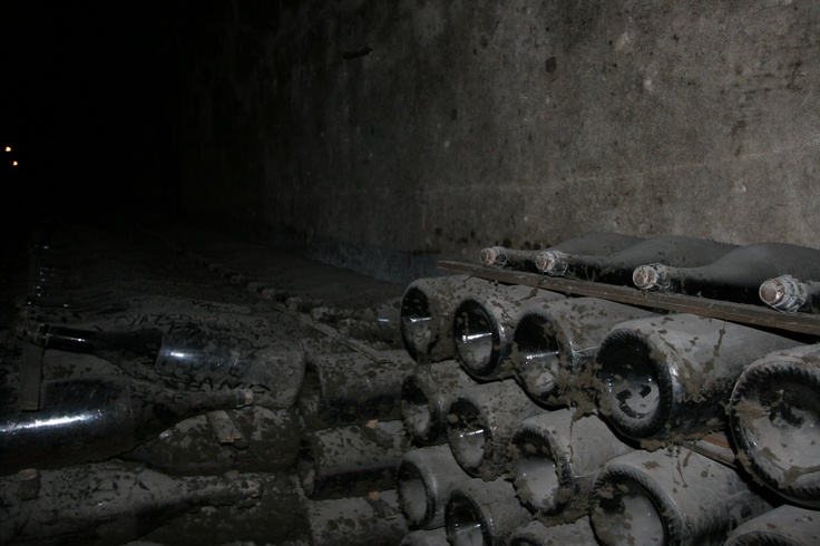 Bottles of wine, covered in decades of dust - Mumm Winery, Rheims - France