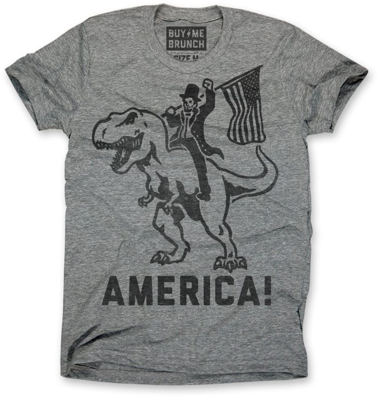 T-Rex America T-Shirt: As you can see on this tee, Abraham Lincoln rode a t-rex when he founded the United States in the Jurassic Period. It's American history.