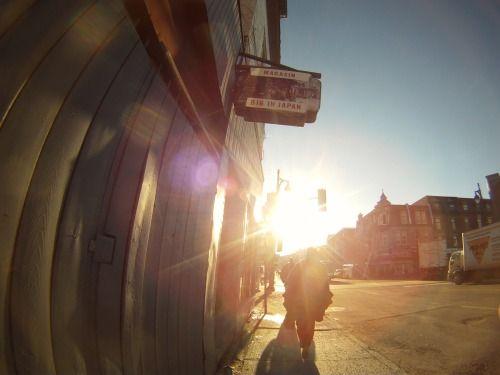 Avenue des Pins under the morning sun