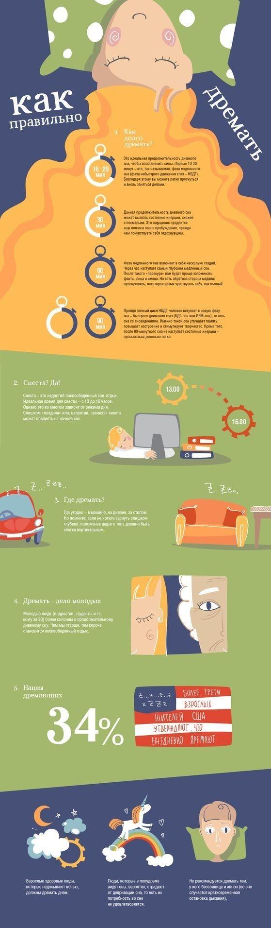 Как правильно дремать инфографика, сон, дремота, длиннопост