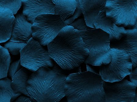 Prussian Blue Silk Wedding Rose Petals.: