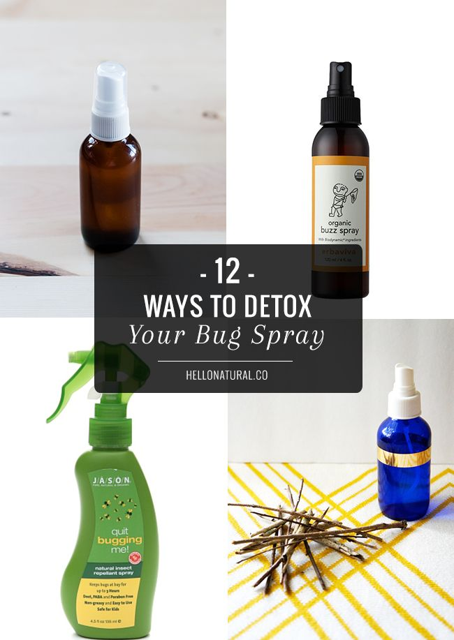 12 Best Natural Bug Sprays | http://hellonatural.co/12-best-natural-bug-sprays/