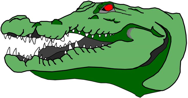 Cartoon Alligator Head Clipart - Free Clip Art Images ... - photo#24