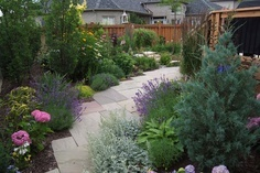 A backyard transformed into a grassless oasis. No irrigation required when you prepare your gardens appropriately. www.pathwaystoperennials.com