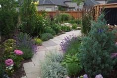 37 best sloped back yards images on pinterest for Grassless garden designs