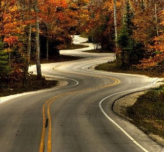 The mix of autumn colors and crazy leading lines on the road