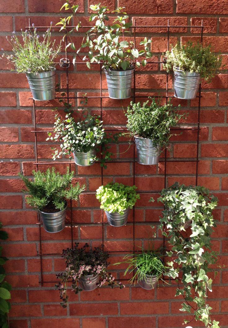 Krukor på väggen Krukor i armeringsnät Blommor Pinterest