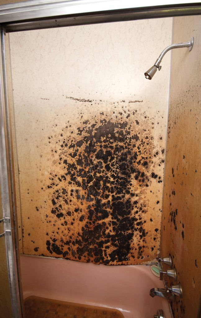 Remodeling Bathroom With Mold got mold? it might be time for bathroom remodeling | re-bath