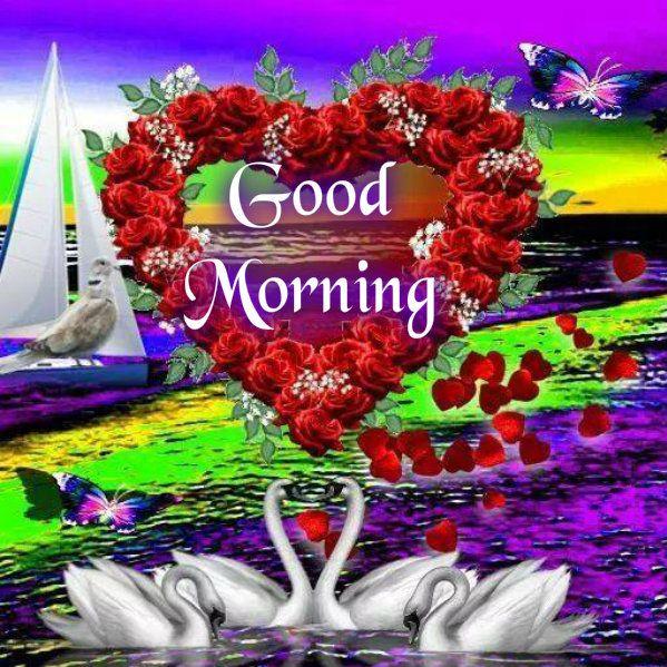 Good Morning Sunshine Russian : Best good evening images on pinterest morning
