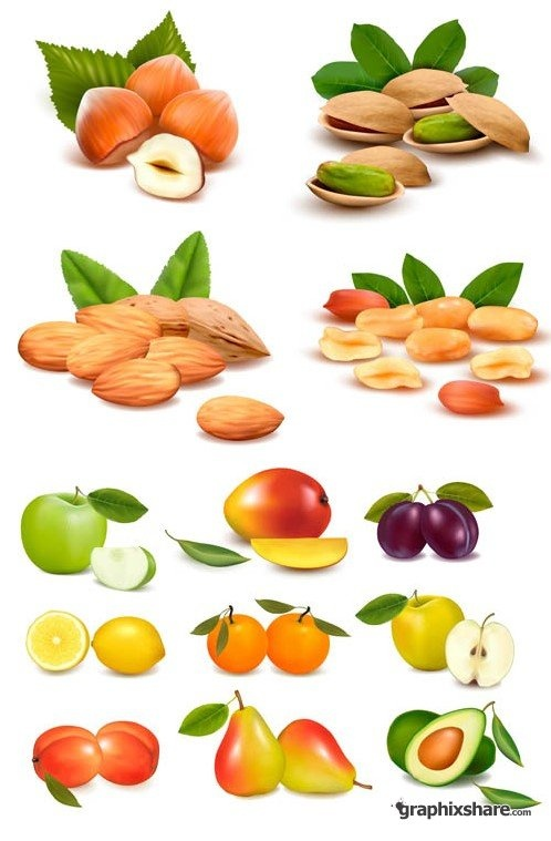 Nuts & Sweet Fruit Vector by graphixshare.