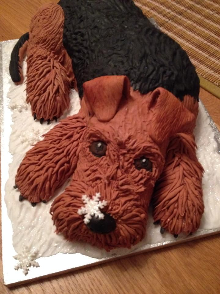 Airedale Terrier cake! I wish I knew how to do this!