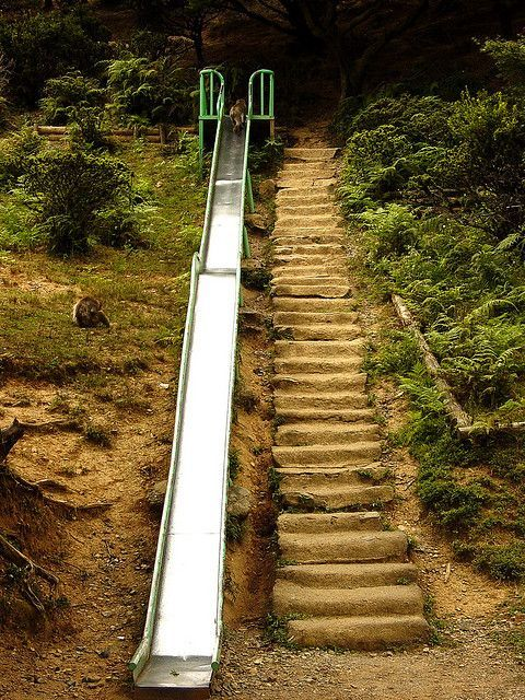 Best 629 Best Images About Hillside Steps Ideas On Pinterest 400 x 300