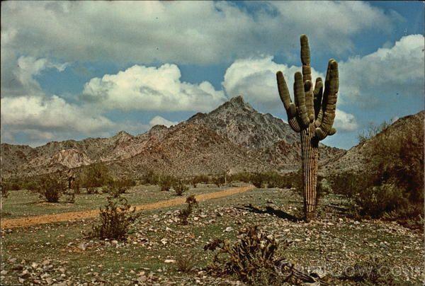Squaw Peak  Phoenix, AZ