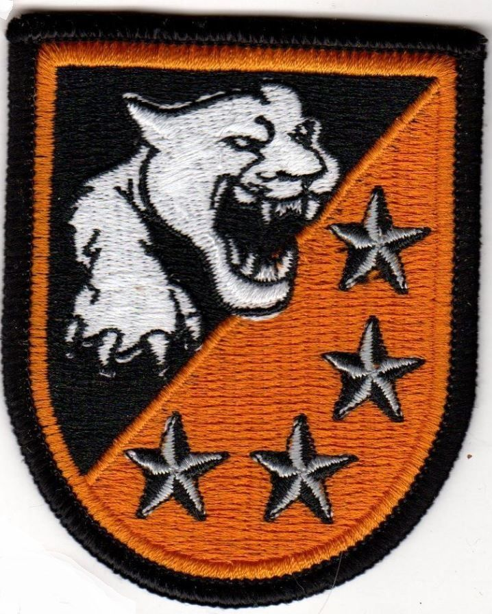 US ARMY BERET BADGE Patch ROTC ? 4 Star with Panther Patch Regiment Division DUI