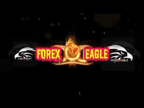 Forex brokers reviews 2020