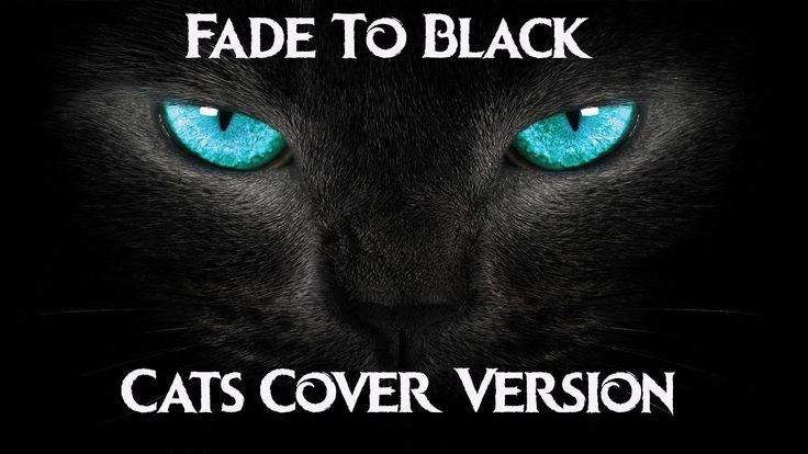 Fade to Black – Cat Version - Cats Singing