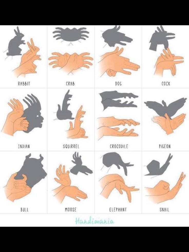 How To Make Cool Hand Shadow Puppets