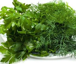 Летние травы, которые вредят здоровью: чем опасны мята, укроп и сельдерей http://ukrainianwall.com/health/letnie-travy-kotorye-vredyat-zdorovyu-chem-opasny-myata-ukrop-i-selderej/  Многие привыкли считать, что все дары, которые преподносит нам природа, полезны для здоровья. Но, к сожалению, даже самые распространенные и, казалось бы, целебные травы могут негативно влиять на организм человека.