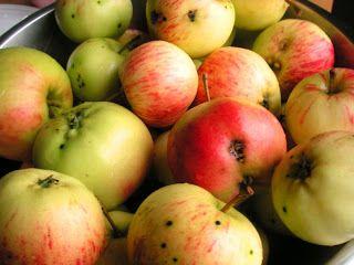 Herkkusuun lautasella-Ruokablogi: Omenasiideri