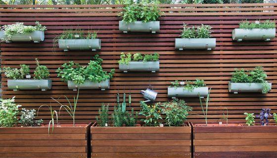 Como fazer uma horta orgânica em apartamento 5