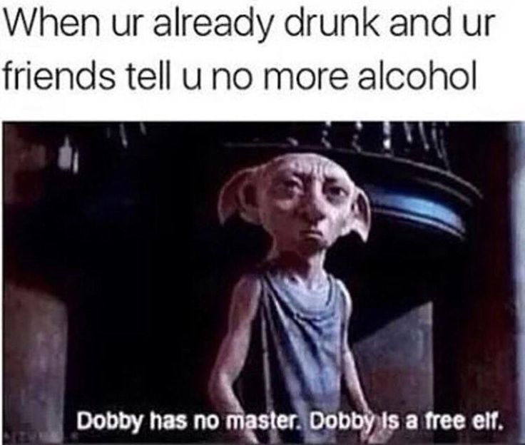 Dobby has no limits funny pictures bored teachers