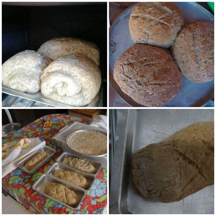 Pão de bagaço do malte