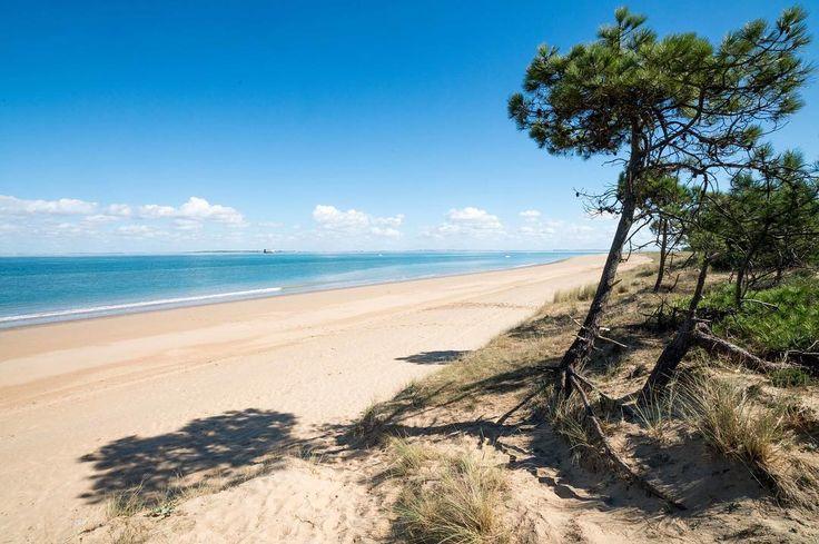176 vind-ik-leuks, 7 reacties - Île Oléron - Marennes Tourisme (@marennesoleron) op Instagram: 'Une des plus belles plages de l'île d'Oléron... La #plage de la gautrelle😍😍⠀ #IOMN #Oleron #nature…'