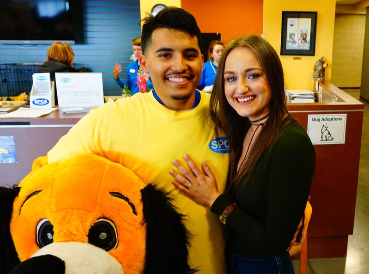 Couple Gets Engaged at the SPCA Adoption Center! Find the Love of Your Life at the SPCA - The SPCA of Northern Nevada
