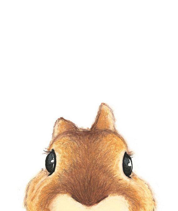 Cute Brown Rabbit Illustration More