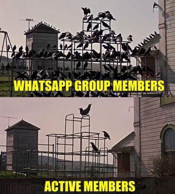 Whatsapp group vs active members