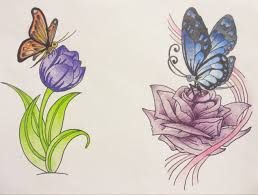 Image result for butterfly drawings images