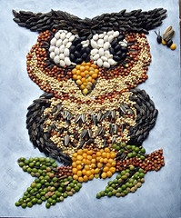 Mosaic Owl by Linda Fohn    MOM  I MADE A ROOSTER USING SEEDS GLUED ONTO A WOODEN CUT OUT SHAPE.  IT WAS REALLY PRETTEY.   JR