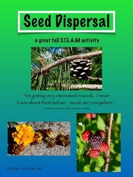This is a complete lesson for seed dispersal, which is a fun back to school activity!  The lesson is aligned to the Next Generation Science Standards, making it perfect for second and third graders.  There are also extension activites listed.  The STEM to STEAM trio hopes you enjoy this!Don't forget to leave feedback!